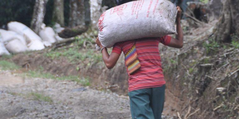 Martine Combemale : « Le travail des enfants est invisible. Et pourtant, il est présent (...) y compris, près de chez nous »